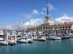 Выставка «SOCHI Yacht Show» завершила свою работу