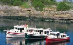 Nordic Tugs подписало контракт с Ботмаркет