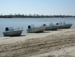 Первый тест-драйв моторных лодок Terhi — в Ростове