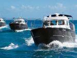 Яхты Elling в ценре внимания